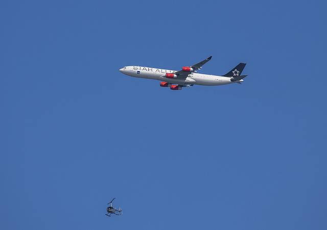 SAS flyg webb
