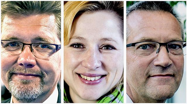 Danska politiker webb