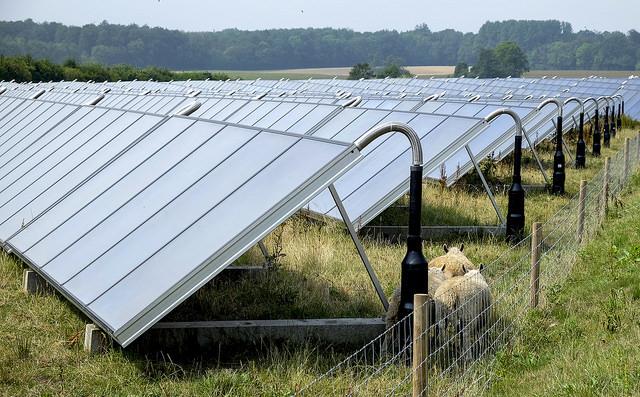 solkraft-webb