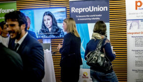 reprounion-webb
