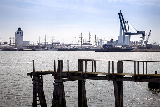 Esbjergs hamn webb