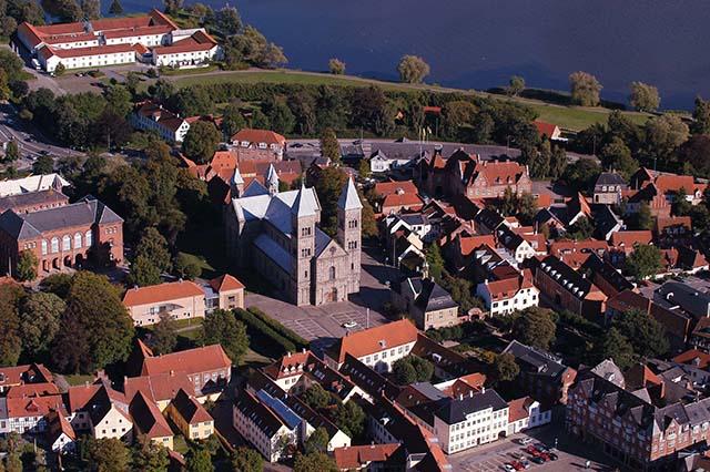 Viborg domkirke webb