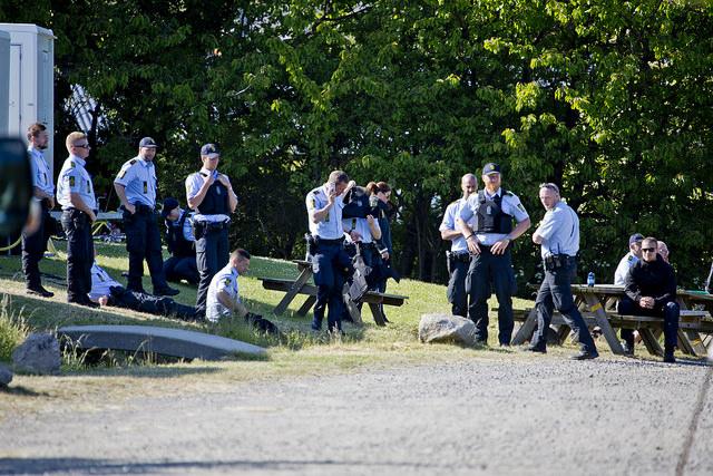 Dansk politi webb