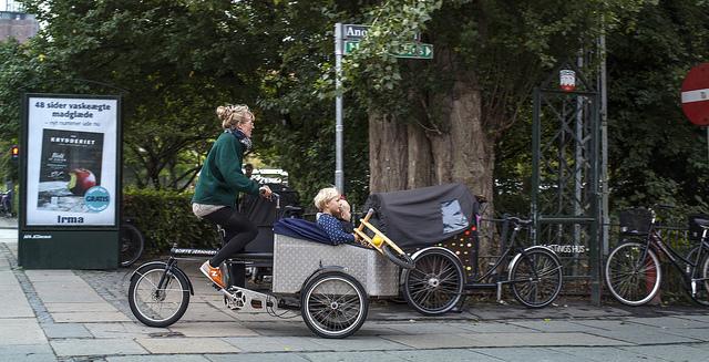 Danmark minst korrumperat foto Johan Wessman