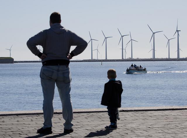 Lynetten vindkraft web
